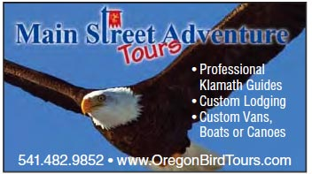 Main Street Tours Advertisement.