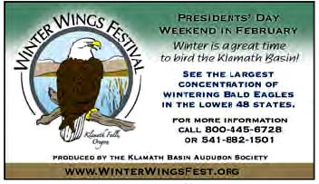 Winter Wings Festival Advertisement.