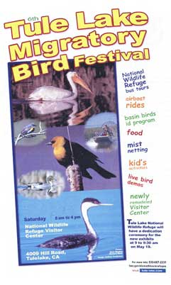 Graphic: Birding Festivals and Events